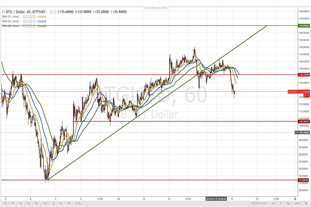 Анализ криптовалют на 21.02.2018: пара BTG/USD