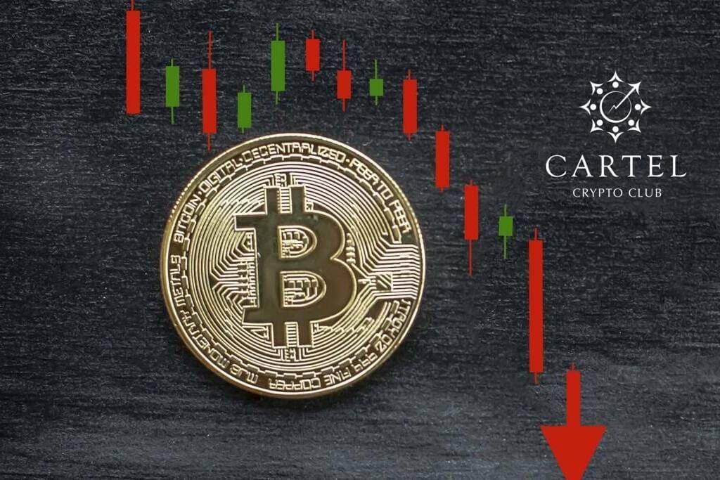 Новости криптовалют о падении цифровых монет