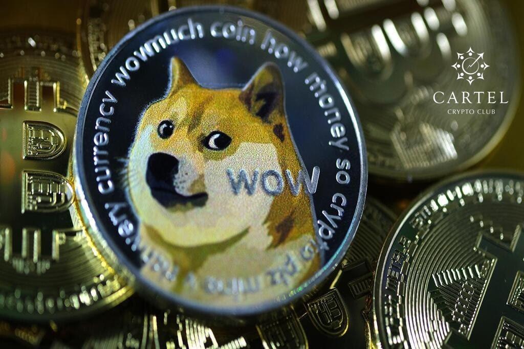 Новости криптовалют о криптовалюте-мем DOGE
