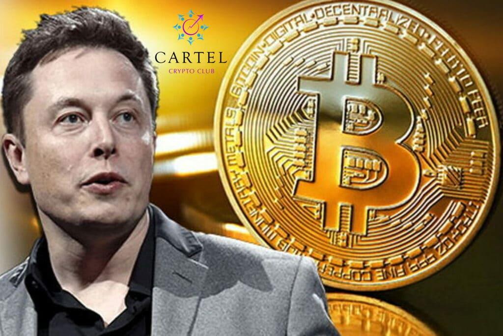 Новости криптовалют о биткоине и Илоне Маске