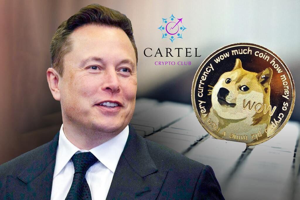Новости криптовалют об Илоне Маске и Dogecoin