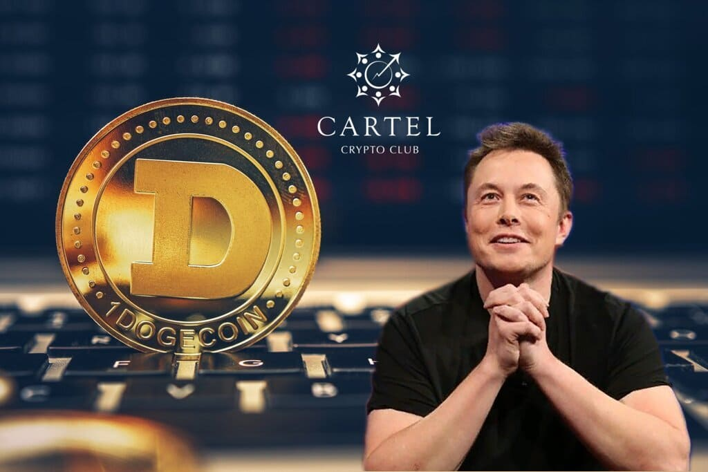 Новости криптовалют об Илоне Маске и DOGE