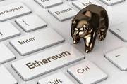 Новости криптовалют о прогнозе от Tetras Capital
