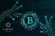 Новости криптовалют о возможном дампе токена BCHA