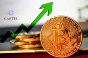 Новости криптовалют о росте биткоина