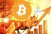 Новости криптовалют о новом подорожании биткоина