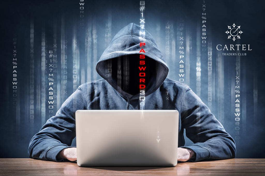 Новости криптовалют о взломе Neko Network