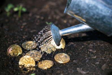 Новости криптовалют об очередном росте курса биткоина