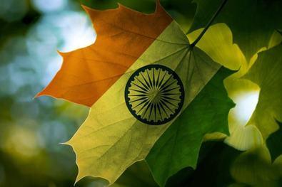 Индия и Канада вместе работают в сфере технологии блокчейн