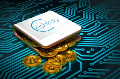Новости криптовалют о кошельке CashРay
