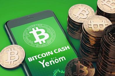 Новый кошелек для криптовалют Yenom