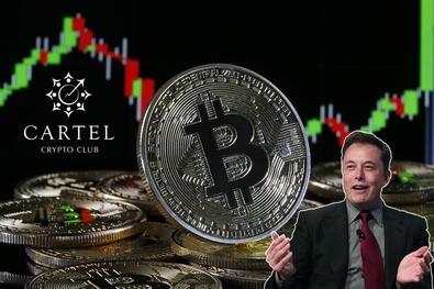 Новости криптовалют о критике Илона Маска