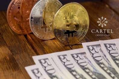 Новости криптовалют о доминировании биткоина на рынке