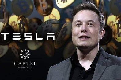 Новости криптовалют о «бриллиантовых руках» Tesla
