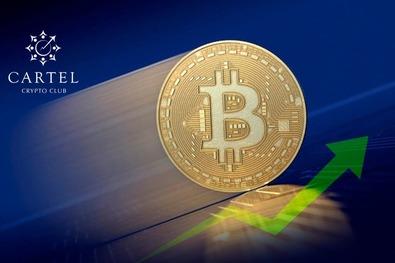 Новости криптовалют о халвингах биткоина