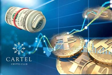 Регулирование криптовалют: что мировые организации думают о стейблкоинах